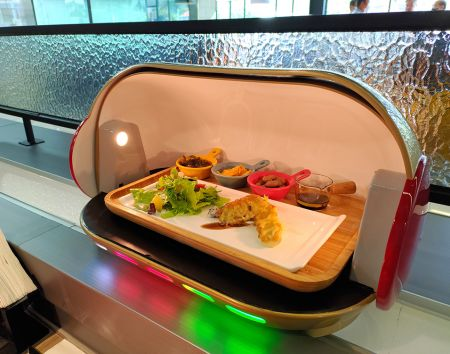 Food Delivery Robot