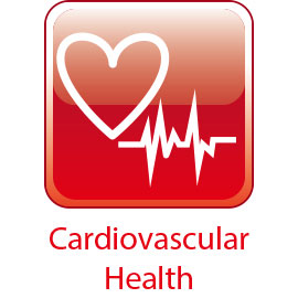 Supliment de sprijin cardiac