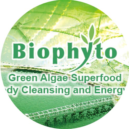 Superfoods microalgae Spirulina Chlorella