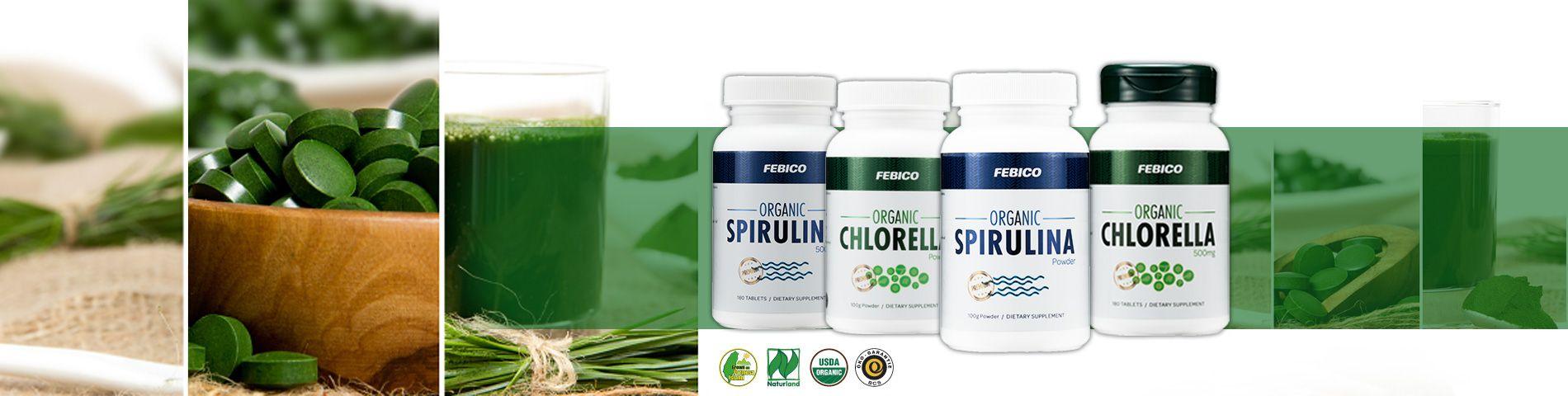 The highest quality Organic Superfoods Microalgae Producer