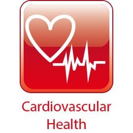 Saúde cardiovascular - Suplemento de suporte cardíaco