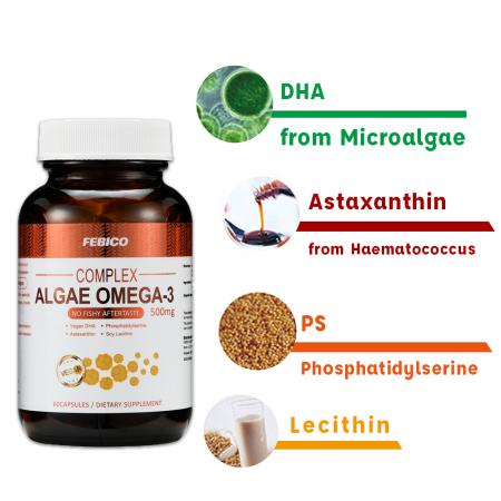 DHA Oil Ingredient