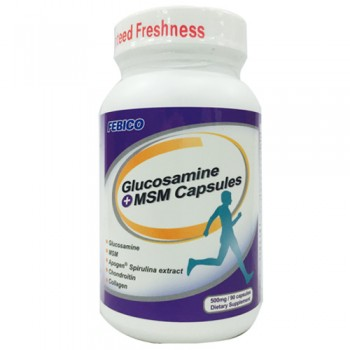 Glucosamine + MSM Capsules - Glucosamine Chondroitin MSM Capsules