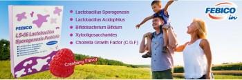 LS-66 Lactobacillus Sporogenes Probiotics
