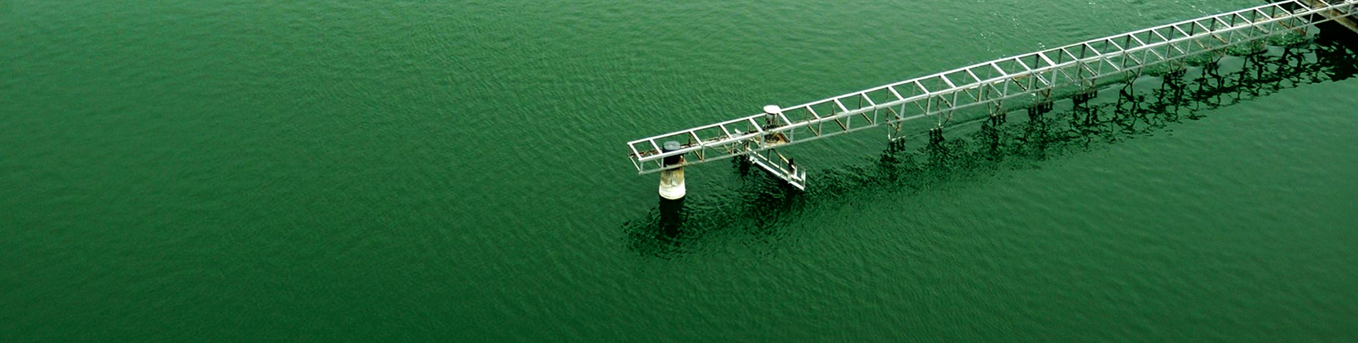 World leading producer of microalgae and health supplements Manufacturer in Taiwan