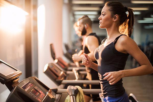 Treadmill Wiring Harness