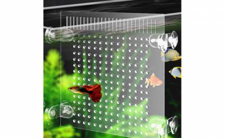 Transparent acrylic fish tank partition: The clear and light acrylic sheet creates a new space for the fish tank.