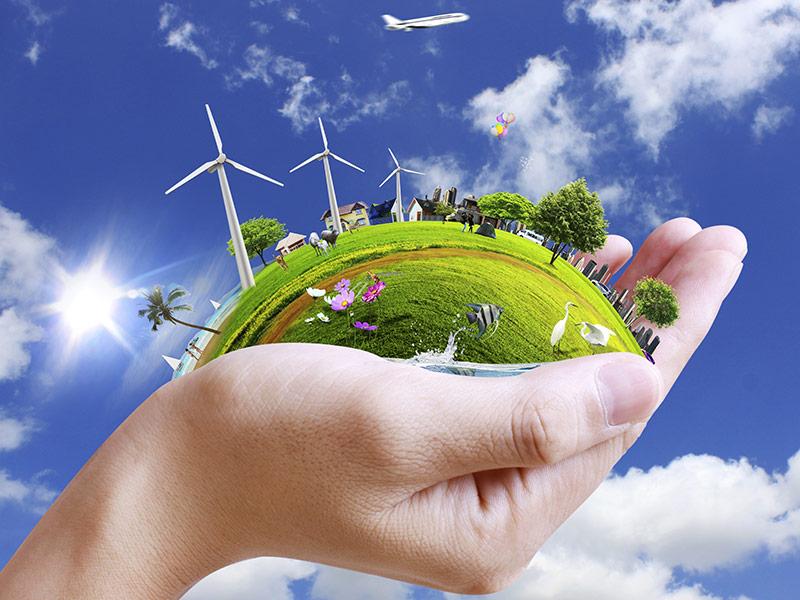 對生命之尊重,對環境之愛護。