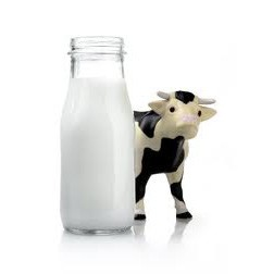 Dairy & Juice Beverage Processing Machinery