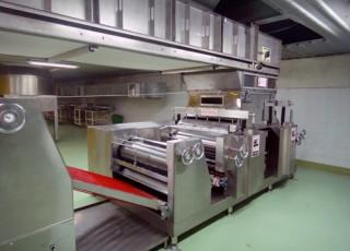 Material Feeding Conveyor