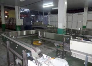 (11) Bag Noodle Conveyor