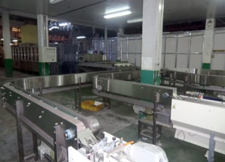 Bag Noodle Conveyor