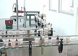 Cup Noodle Conveyor