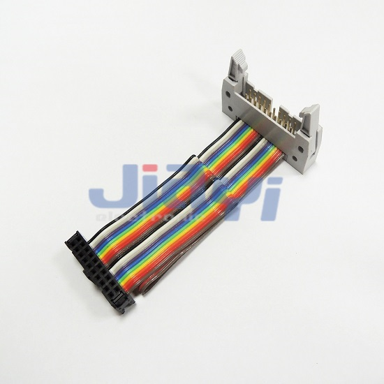 Rainbow Flat Cable Assembly - Rainbow Flat Cable Assembly