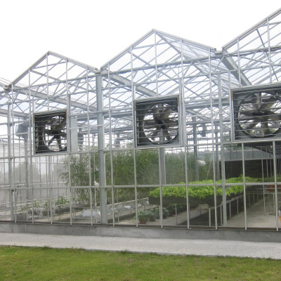 Greenhouse Cast Acrylic Sheet (6mm)