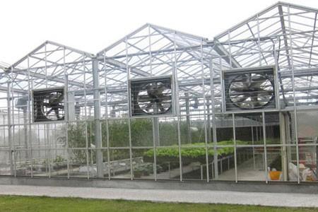 Acrylic Greenhouse