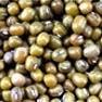Solução de moagem e moagem de feijão verde