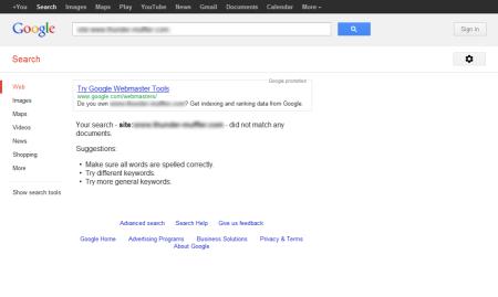 改版前Google 并没有收录任何资料