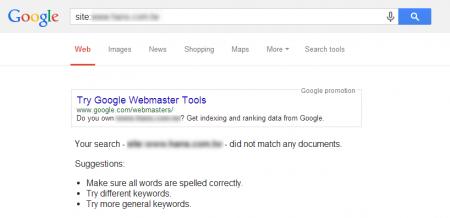 改版前 Google 並沒有收錄任何資料