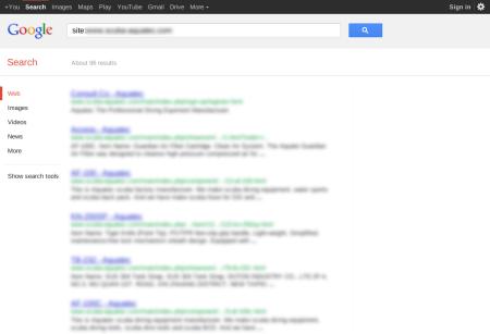 改版前Google 只有收录96 笔资料