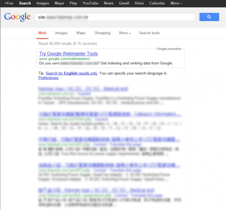 改版前 Google 只有收錄 40,000 筆資料
