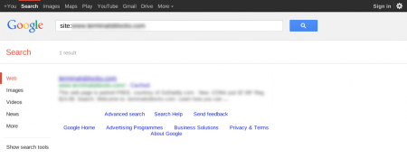 改版前Google 只有收录1 笔资料(全新网址)