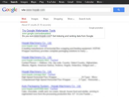 改版前Google 只有收录61 笔资料