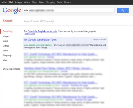改版前Google 只有收录42 笔资料
