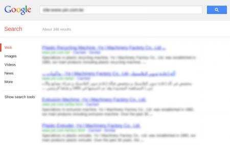 改版前Google 只有收录385 笔资料