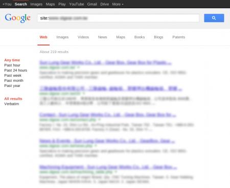 改版前Google 只有收录219 笔资料