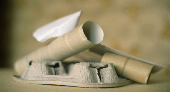 Recycle empty roll of toilet paper and egg carton