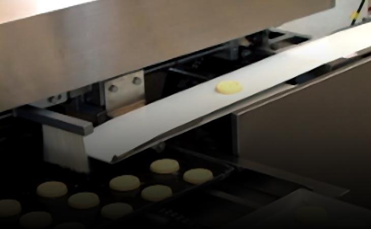 Stroje a zariadenia na tortu Scallion