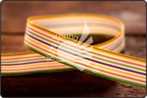 Multi-colored 15mm Stripe Ribbon - Multi-colored 15mm Stripe Ribbon
