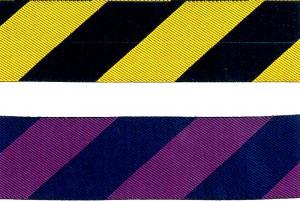 ジャカードウェビング - ジャカードリボン(KN547)