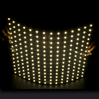 Placa de luz LED de tipo flexible
