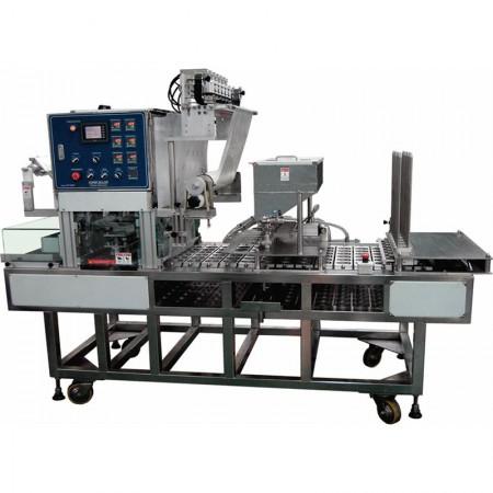 Large Continuous Sealer Machine (PH-22)