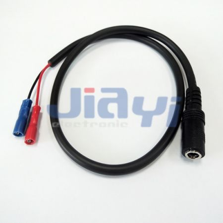 Custom Molded Cable