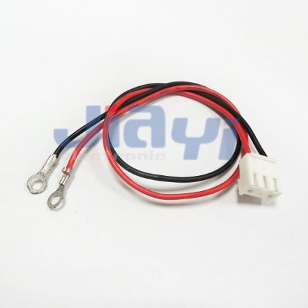 R Type Terminal Wiring Harness - R Type Terminal Wiring Harness
