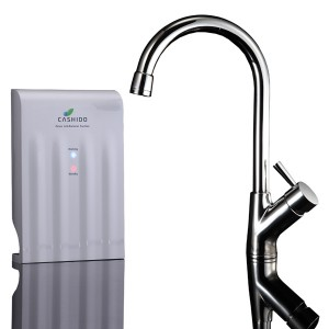 10 Second Machine with Ozone Faucet