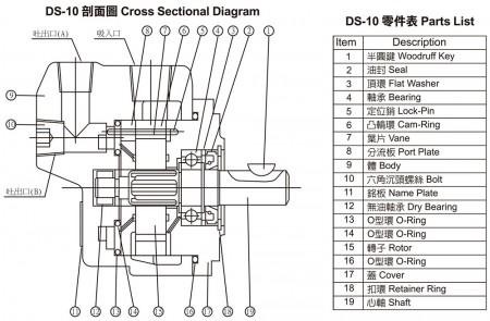 DS-10
