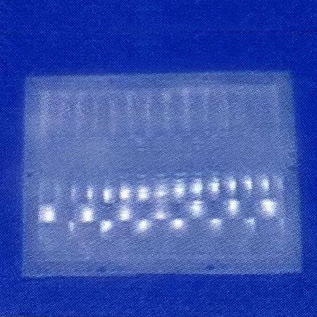 PIR Sensor Lens 60.7x42.4 mm