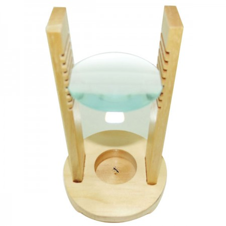 Wooden Educational Bug Insect Specimen Viewer Stand Magnifier