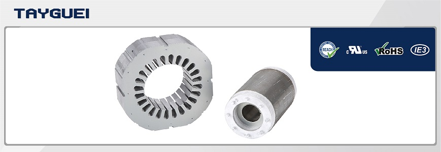 160x80 mm Stator Rotor Lamination for Two Poles Motor
