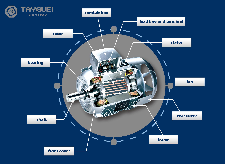 मोटर के सभी भागों का चित्रण