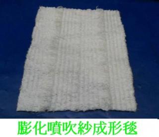 連續紗成型毯 機車 沙灘車 - 膨化噴吹紗成型毯