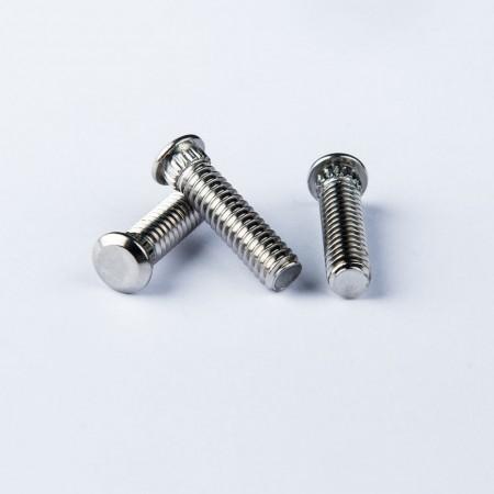 Borchie zigrinate - Borchie zigrinate con dentatura sotto la testa.