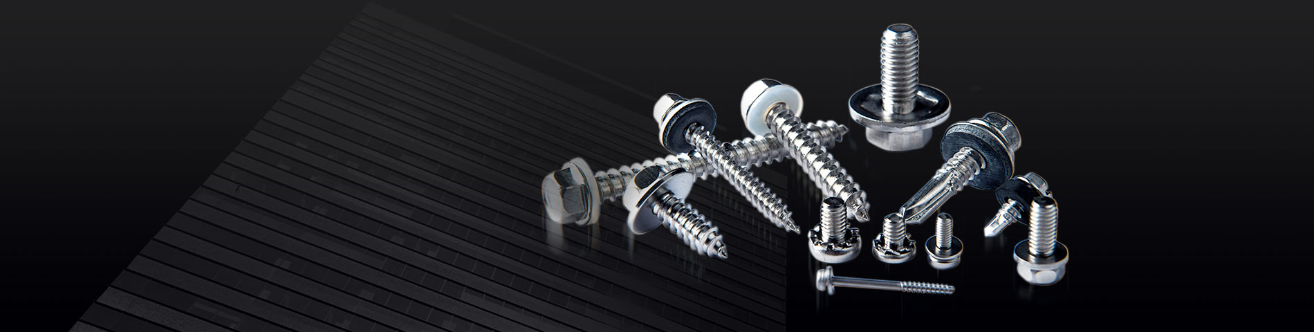 45 Years of Experience  in the Manufacture of  Stainless Steel Fasteners
