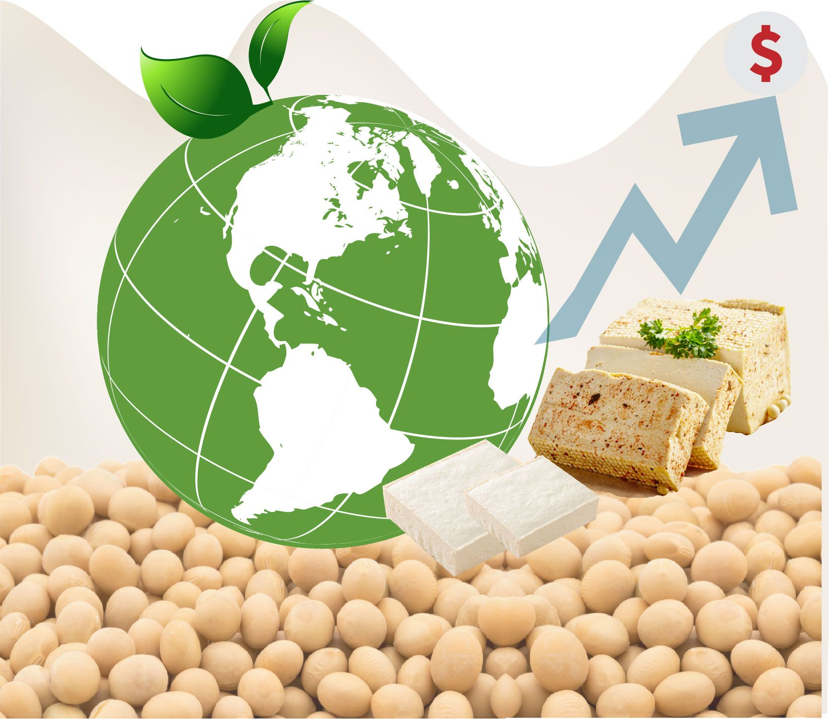 今時到未來引領豆腐市場之因素