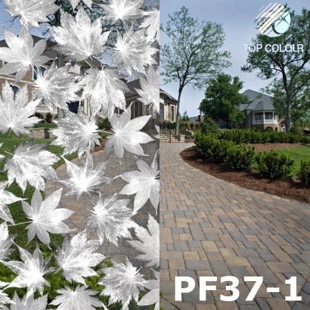 Decorative window film PF37-1 - Decorative window film PF37-1