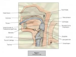 Pozycja intubacji